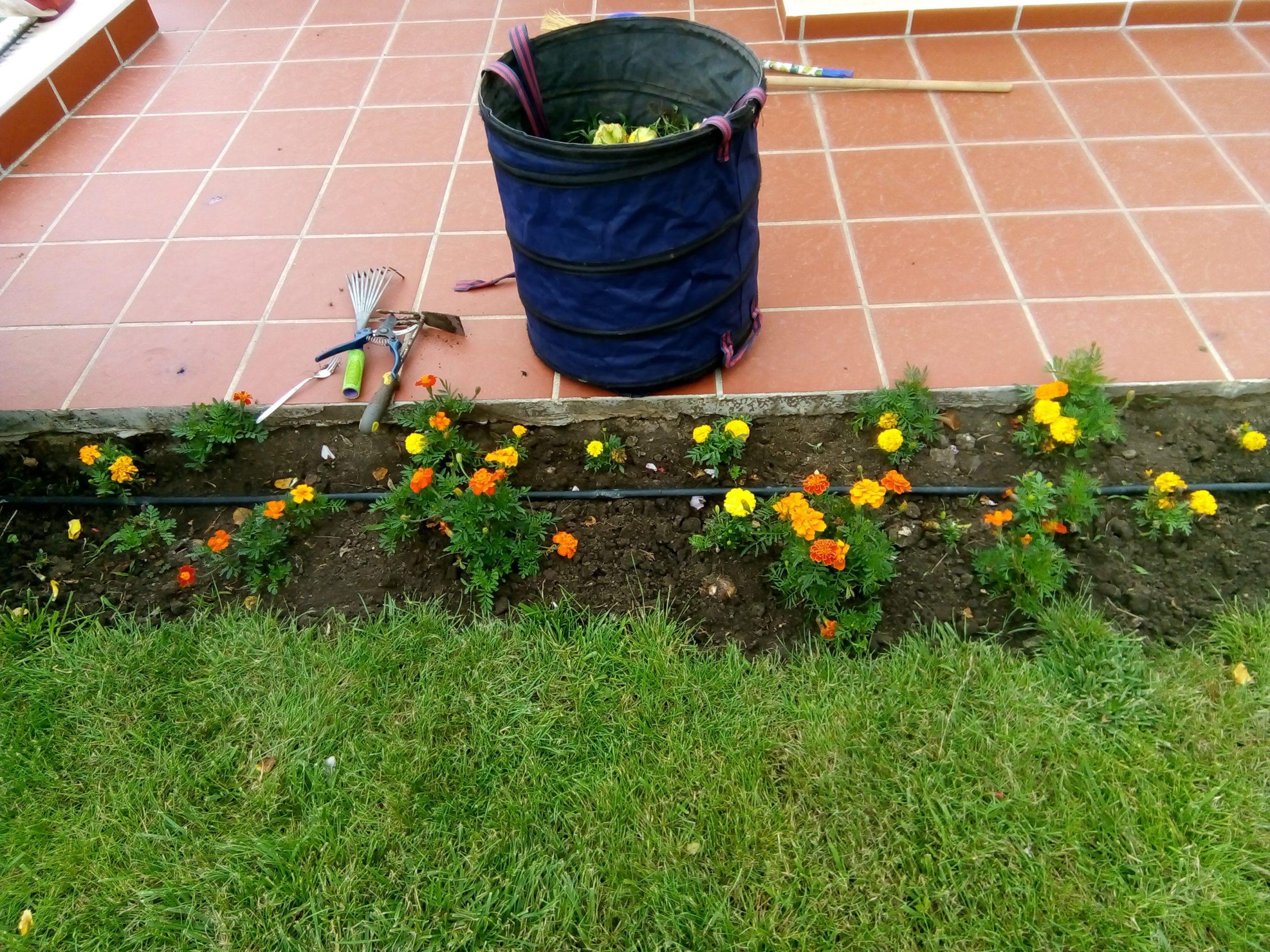 Подготовка на градината за пролетта